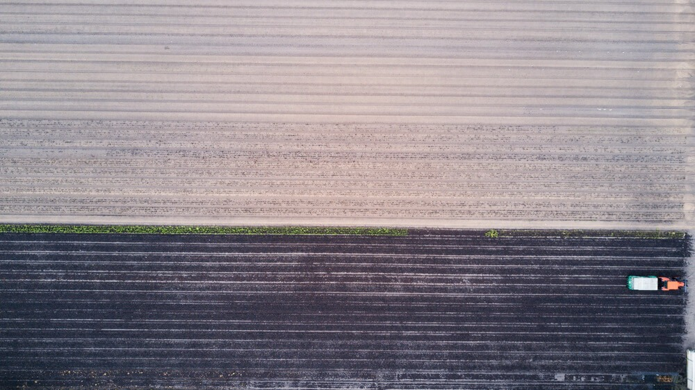 IoT irrigation system