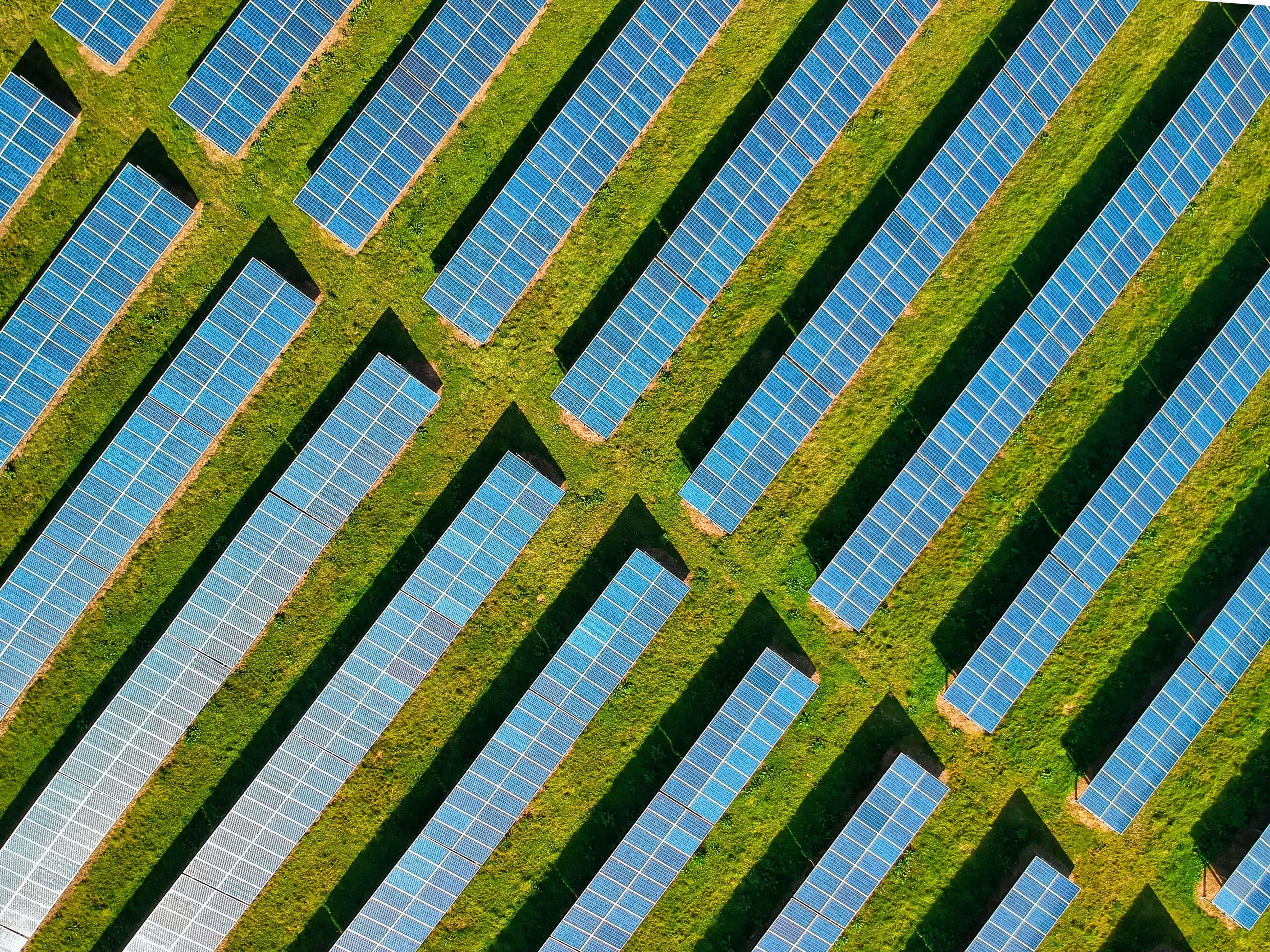 renewable energy software development